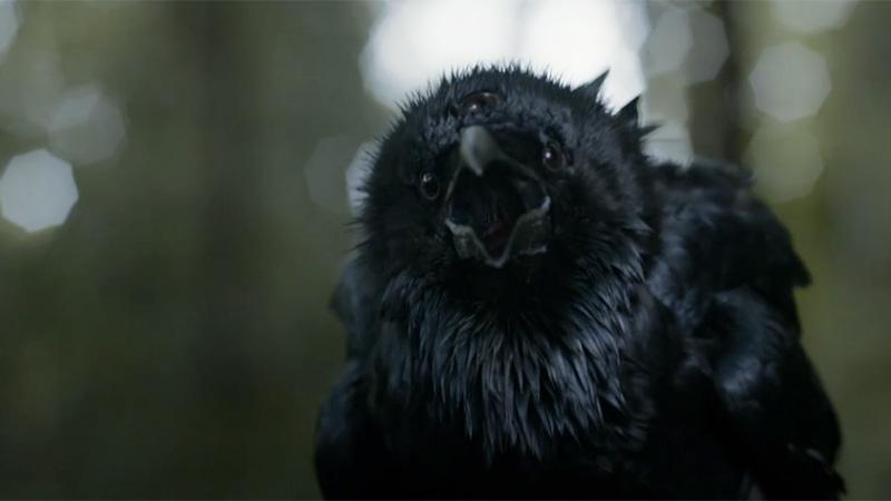 よくわかる ! ゲーム・オブ・スローンズ シーズン3『第2話/三つ目の鴉』